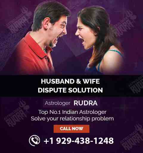 Famous Indian Astrologer in USA, Best Astrologer, Top Indian Astrologer in USA, Canada